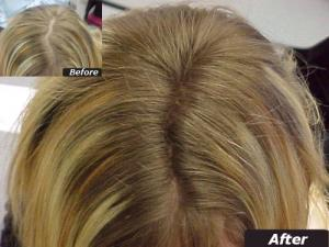 Hair Thickening Fibres 2
